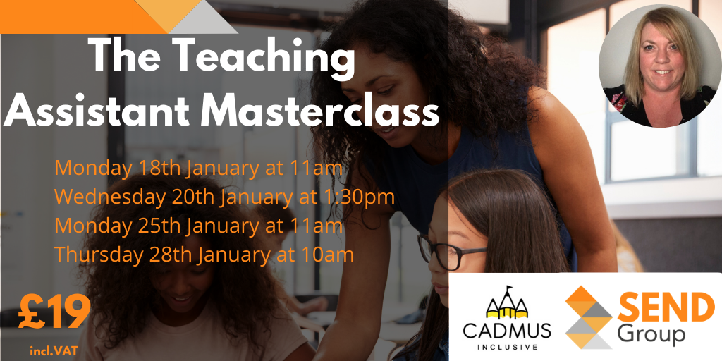 The Teaching Assistant Masterclass